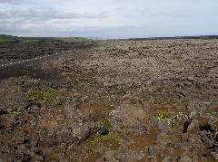 Eldhraun lava field in Iceland - highway and field photo
