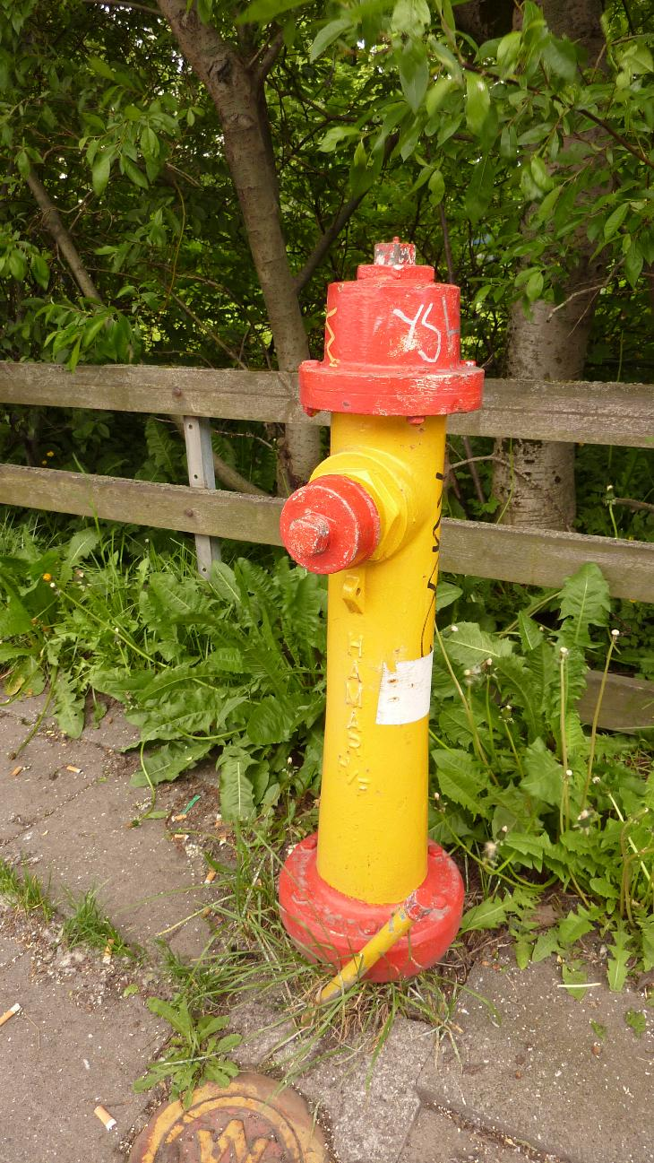 Photo of an old fire hydrant on a residential street in Reykjavik Iceland.