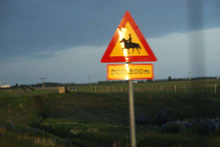Photo of Horse Crossing Sign in Iceland.  Taken from moving vehicle.