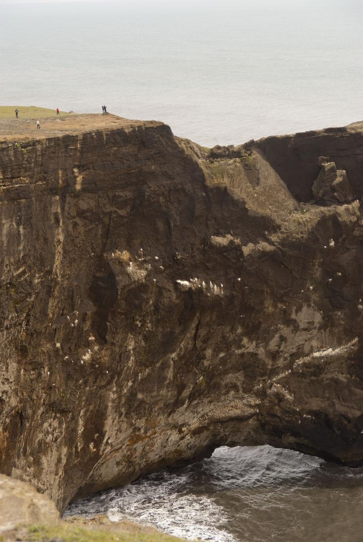 Photo of Dyrhólaey new Vik in Iceland (Dyrholaey), zoomed in to show size of the formation.