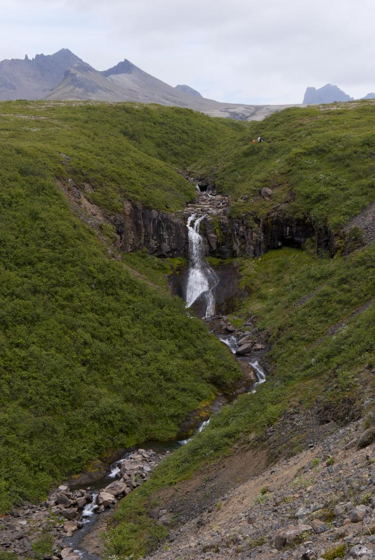 The Svartifoss waterfall as viewed from a trail in Skaftafell National Park.  Known for the Basalt columns that line the back of the waterfall.  View of Midfell in horizon.