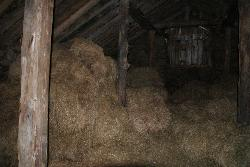 A phot taken inside one of the barns at the Nupsstadur farm in Iceland