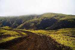 Photo of lime green moss covering everything on both sides of the road along F208 on the way to Landmannalaugar. (Fjallabaksleið nyrðri)