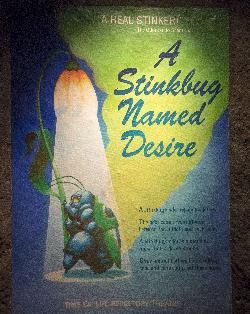 A Stinkbug Names Desire Poster at Disney's Animal Kingdom