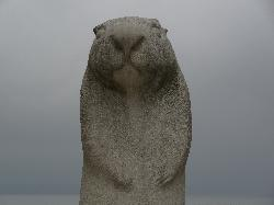Wiarton Willie Statue in Wiarton - Close-up View