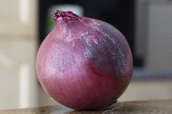 Red Onion - Close-up - Stock Photo