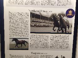 Northern Dancer - Horse Racing Hall of Fame